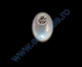 Nasturi cu Picior TR6, Marimea 28 (100 buc/pachet) Nasturi cu Picior A2507, Marimea 20 (144 buc/pachet)